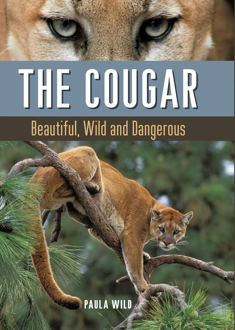 Alisons Big Surprise: Cougar Adventure Series